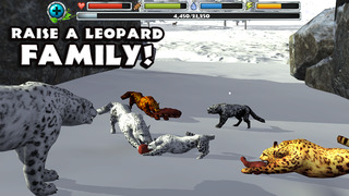 Snow Leopard Simulator screenshot 5