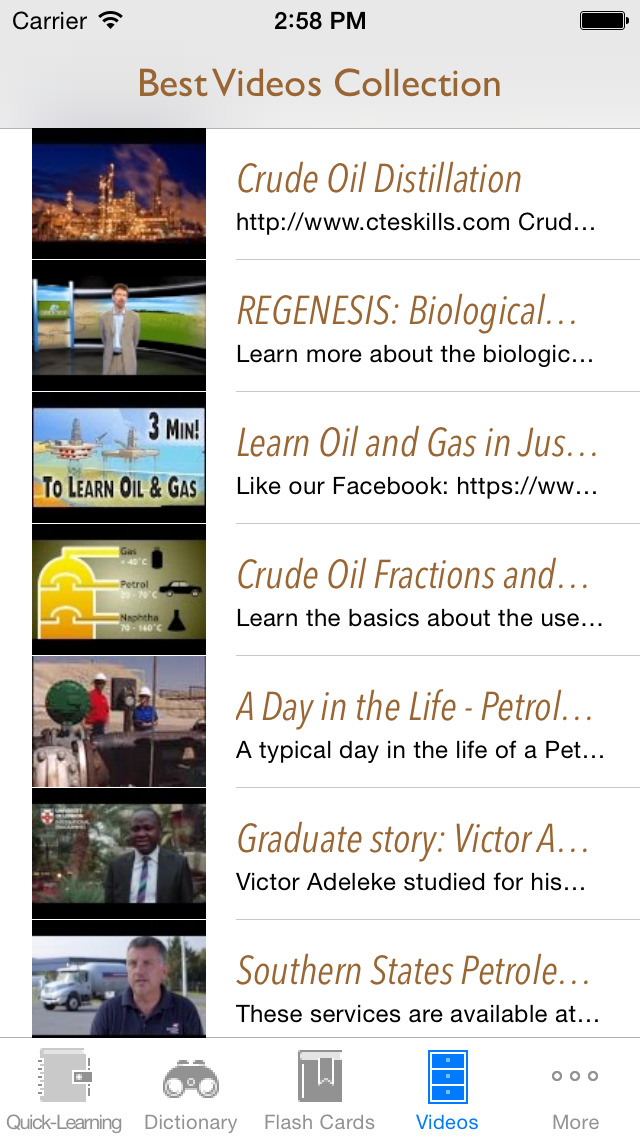 Petro and Chemistry Dictionary: Best Flashcard with Video Lessons and Cheatsheets screenshot 5