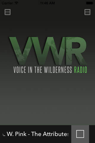 Voice In The Wilderness - náhled