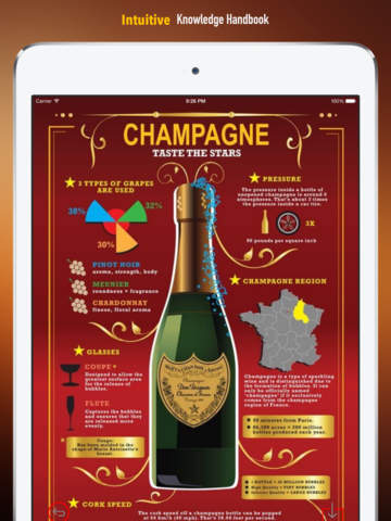 Champagne 101: Quick Study Reference with Video Lessons and Tasting Guide screenshot 6