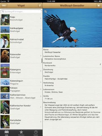1000 Vögel aus aller Welt screenshot 6