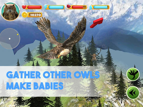 Forest Owl Simulator Full - Be a wild bird! screenshot 7