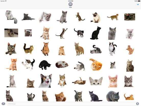 AWW Cat Stickers for iMessage screenshot 4