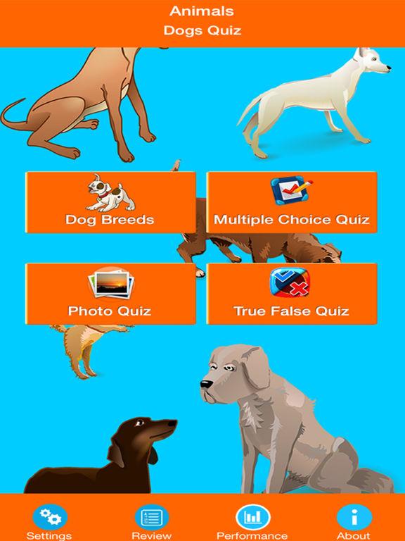 Dog Breeds Quizzes screenshot 6