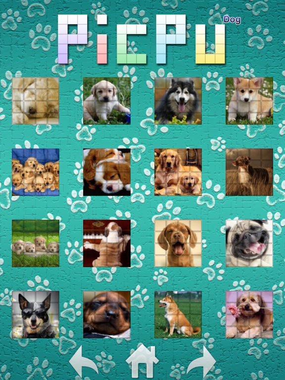 PicPu - Dog Picture Puzzle screenshot 6