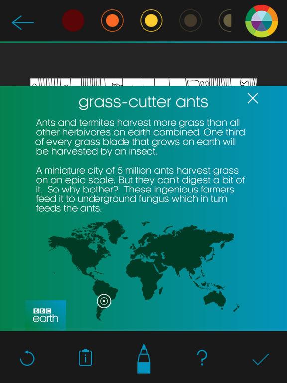 BBC Earth Colouring screenshot 10