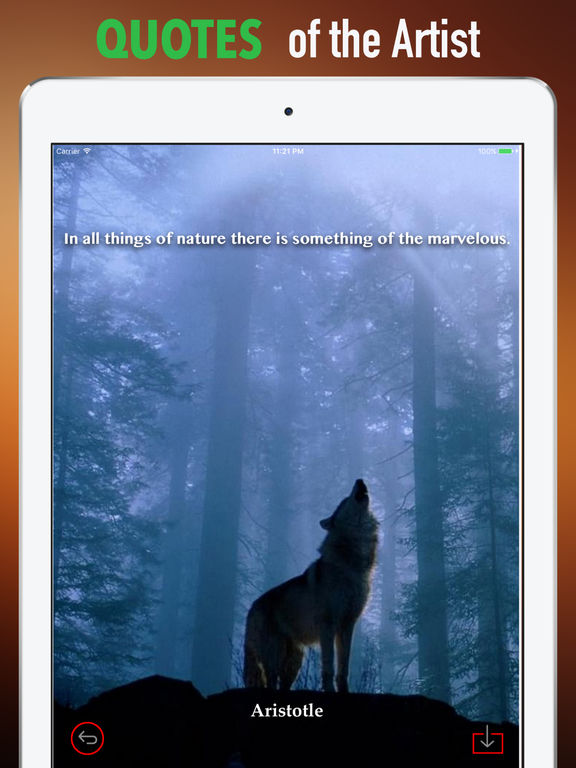 Wolf Howling Wallpapers HD: Quotes,Art Pictures screenshot 9
