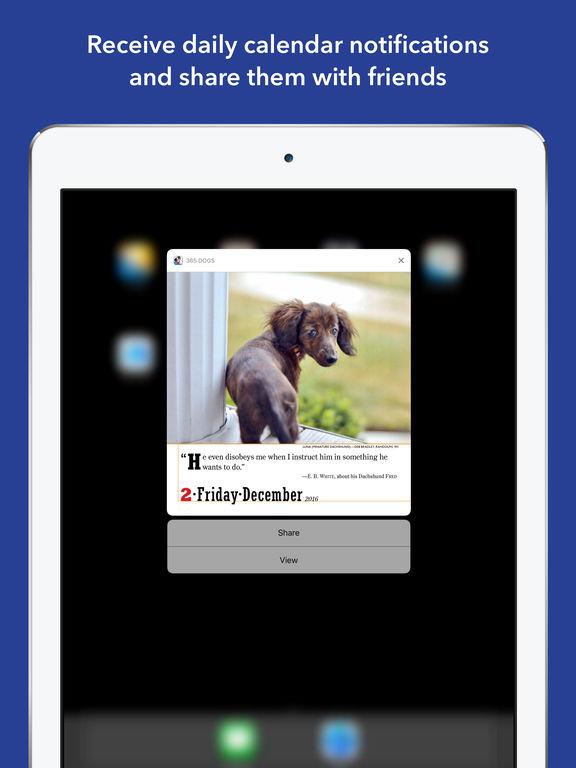 365 Dogs Page-A-Day Calendar 2017 screenshot 7